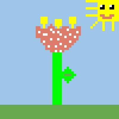 Silvia tulipano