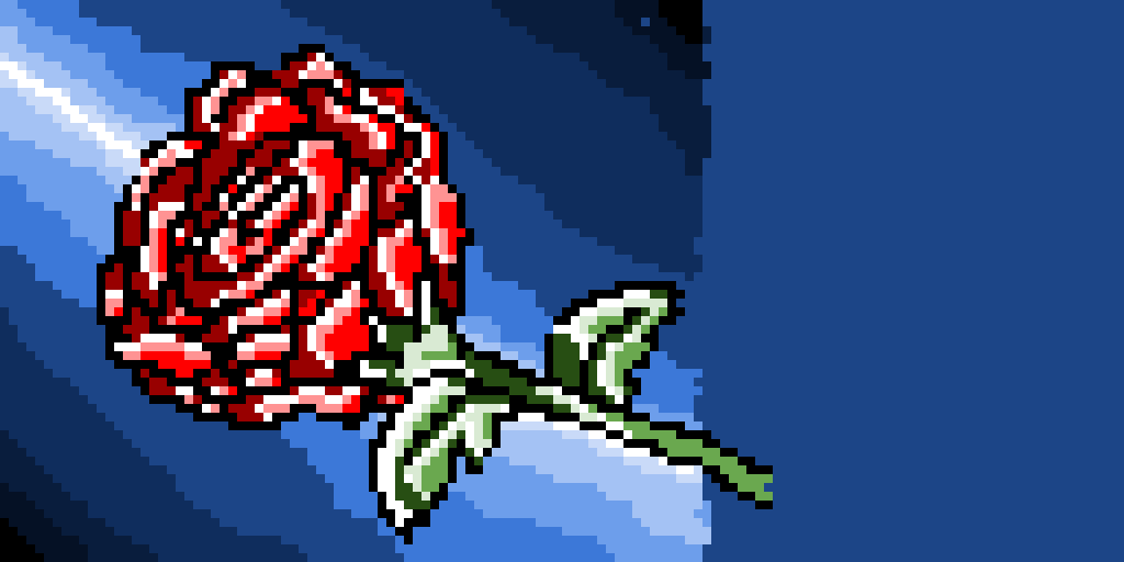 this is a rose