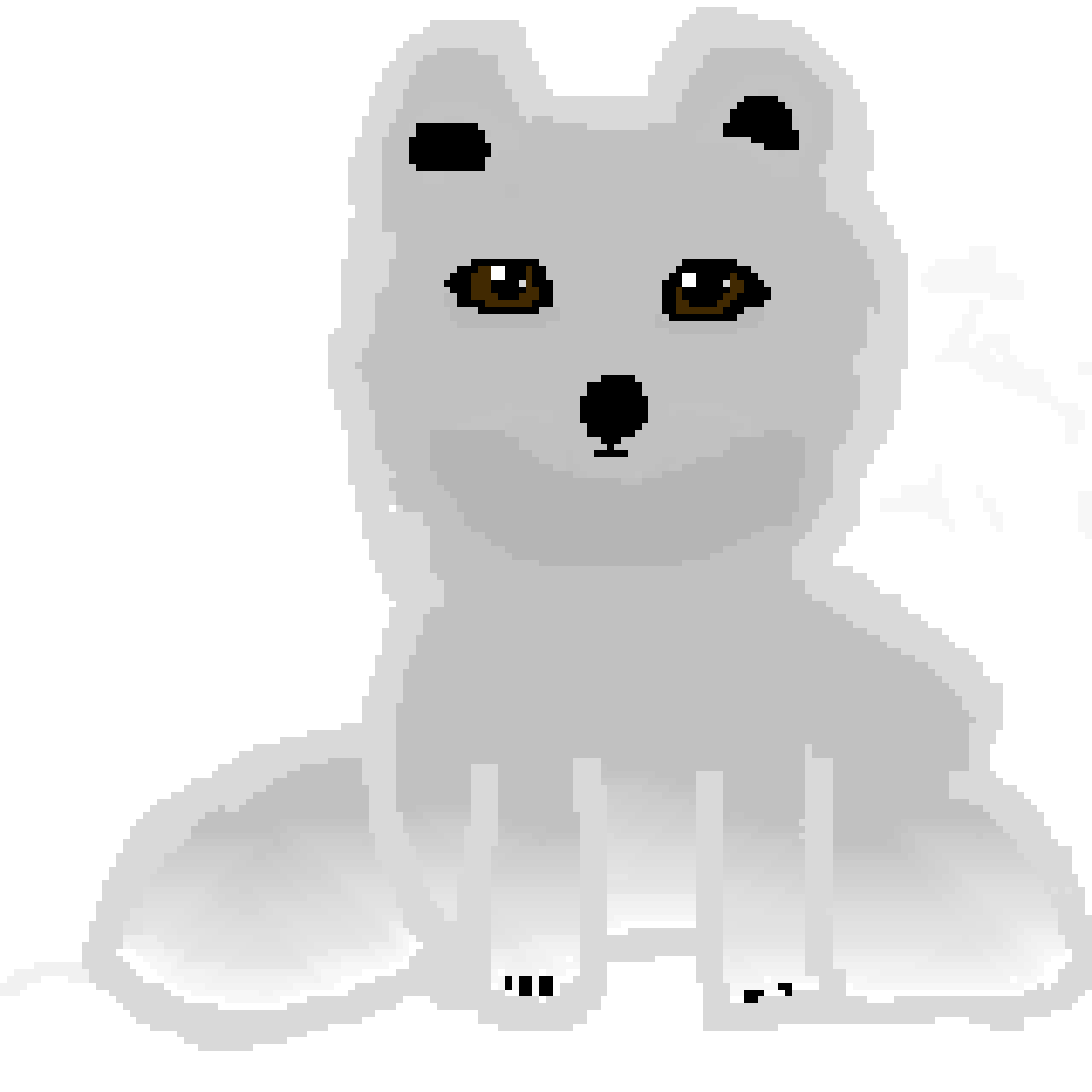 Artic Fox ( Wild animal contest)