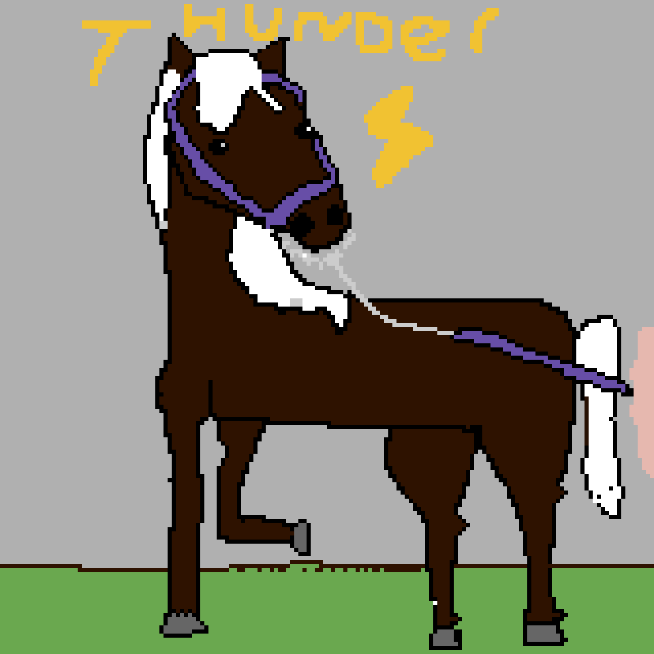 THUNDER! a movie I'm planning to make on my Youtube channel. Thunder is a mare owned By Kaori