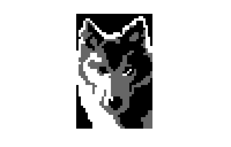 Wolf ( Animal )